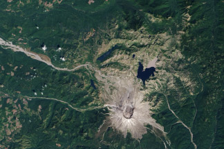 Recovery at Mt. St. Helens:August 20, 2013